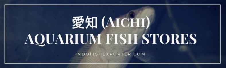 Aichi Perfecture, Aichi Fish Stores, Aichi Japan