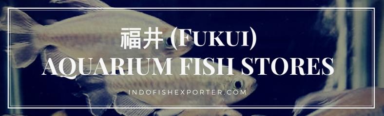 Fukui Perfecture, Fukui Fish Stores, Fukui Japan