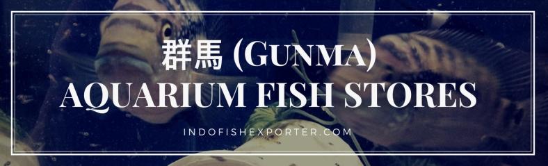 Gunma Perfecture, Gunma Fish Stores, Gunma Japan