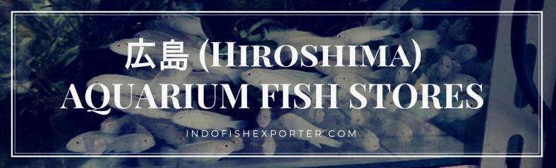 Hiroshima Perfecture, Hiroshima Fish Stores, Hiroshima Japan