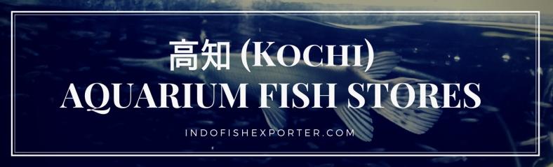 Kochi Perfecture, Kochi Fish Stores, Kochi Japan