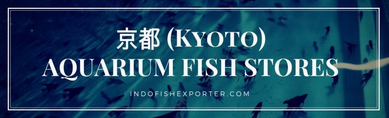 Kyoto Perfecture, Kyoto Fish Stores, Kyoto Japan