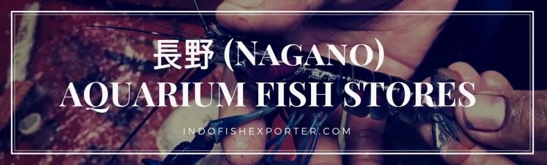 Nagano Perfecture, Nagano Fish Stores, Nagano Japan
