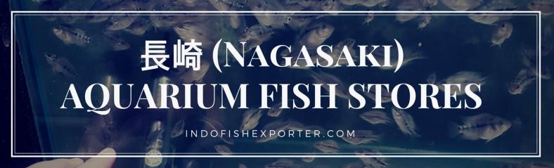 Nagasaki Perfecture, Nagasaki Fish Stores, Nagasaki Japan