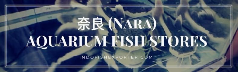 Nara Perfecture, Nara Fish Stores, Nara Japan
