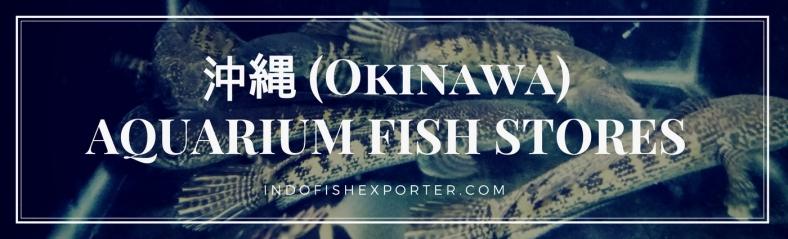 Okinawa Perfecture, Okinawa Fish Stores, Okinawa Japan