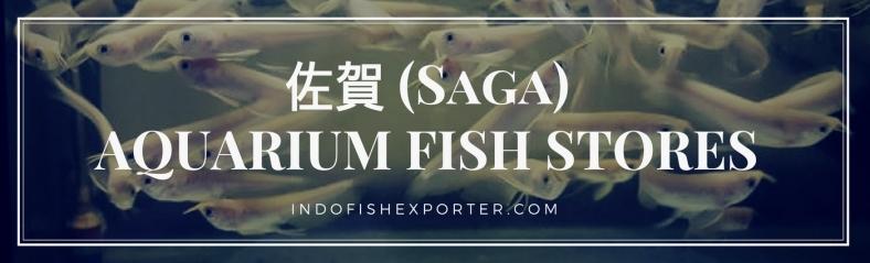 Saga Perfecture, Saga Fish Stores, Saga Japan