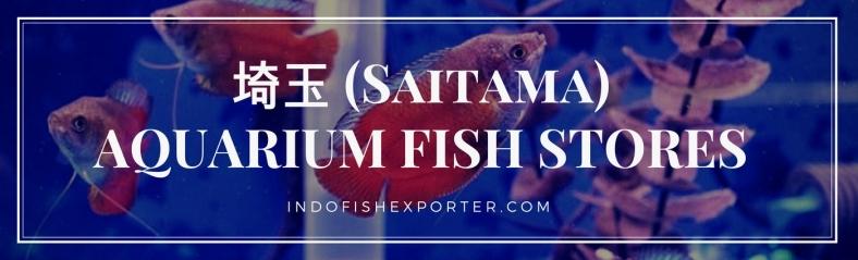 Saitama Perfecture, Saitama Fish Stores, Saitama Japan