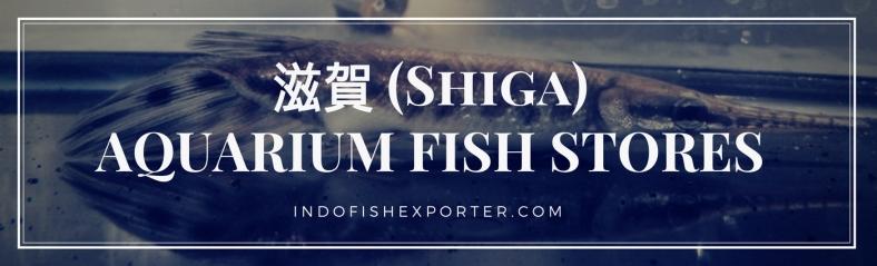 Shiga Perfecture, Shiga Fish Stores, Shiga Japan