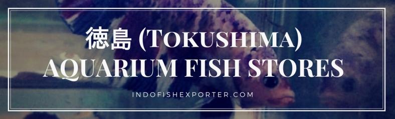 Tokushima Perfecture, Tokushima Fish Stores, Tokushima Japan
