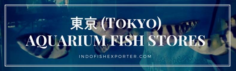Tokyo Perfecture, Tokyo Fish Stores, Tokyo Japan