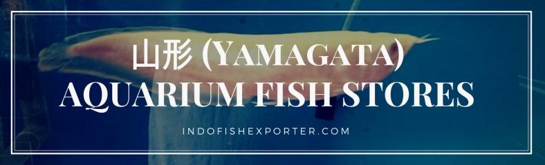 Yamagata Perfecture, Yamagata Fish Stores, Yamagata Japan