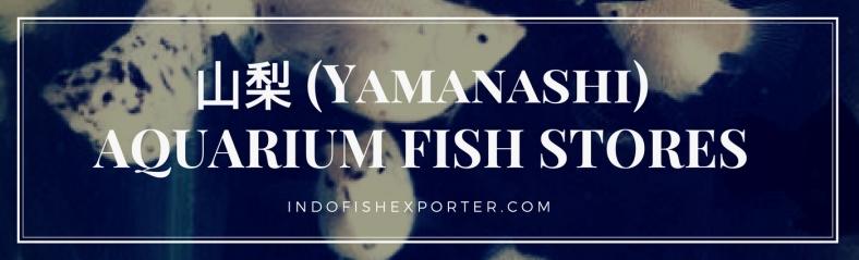 Yamanashi Perfecture, Yamanashi Fish Stores, Yamanashi Japan